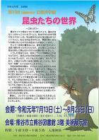 「自然科学展~昆虫たちの世界~」